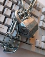 Data trust and data privacy in the COVID-19 period