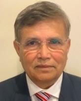 Honorary Professor Satya Paul